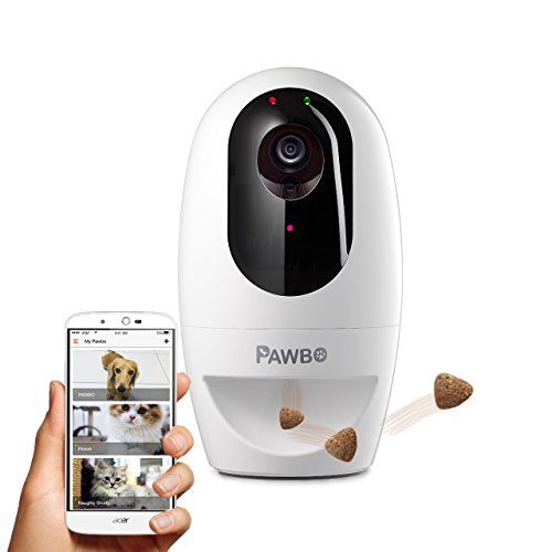 Pawbo Life Pet Camera: Wi-Fi HD Video with 2-Way Audio review