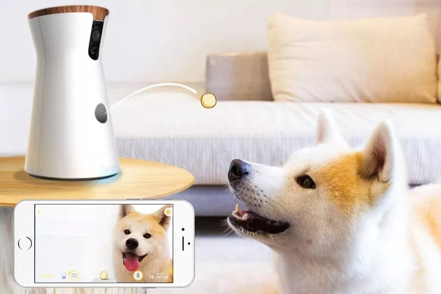 Review of Furbo Dog Camera: Treat Tossing, Full HD Wi-Fi Pet Camera