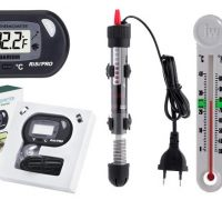 Everything You Should Know about Aquarium Thermometers