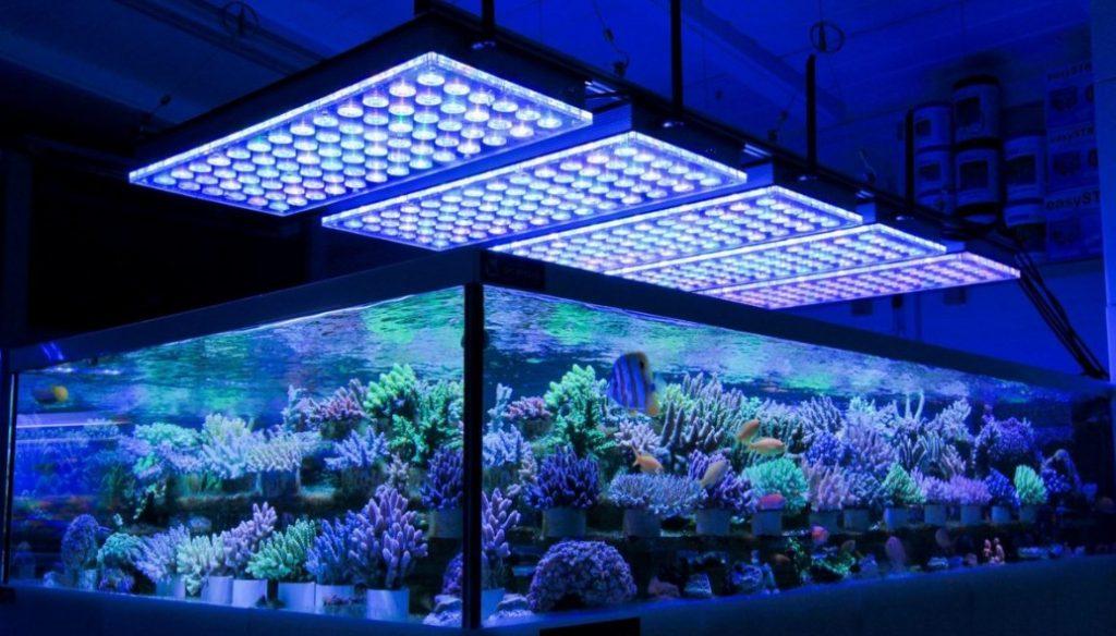 ai led lights