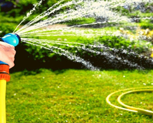 watering hose on lawn